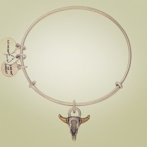 Spirited Skull Alex and Ani Bangle